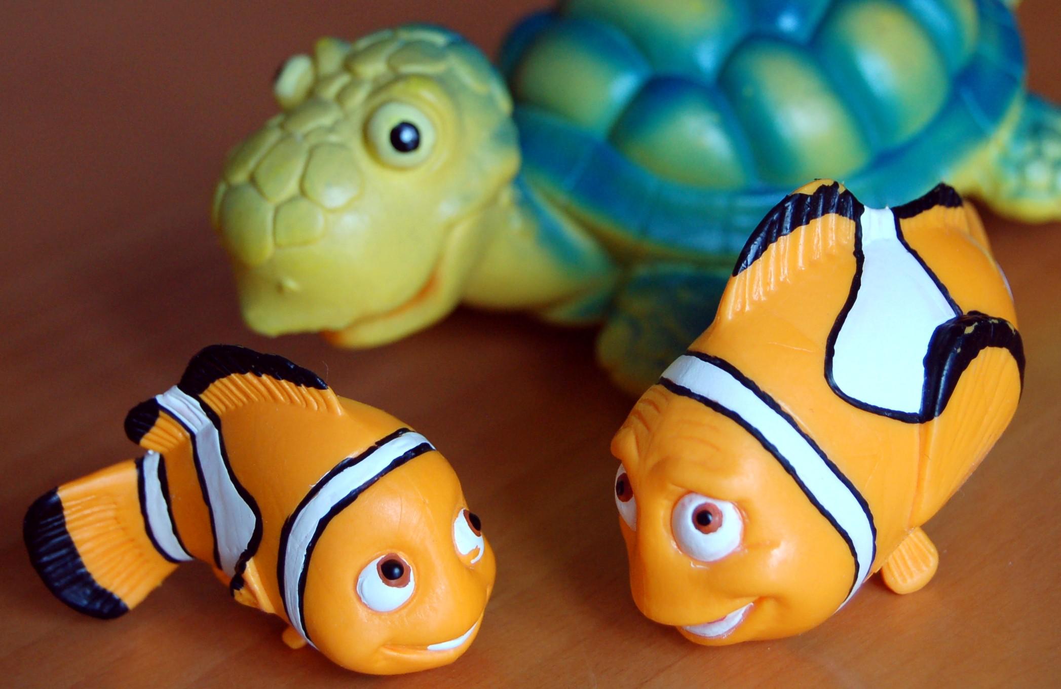 Nel Mondo Di Nemo