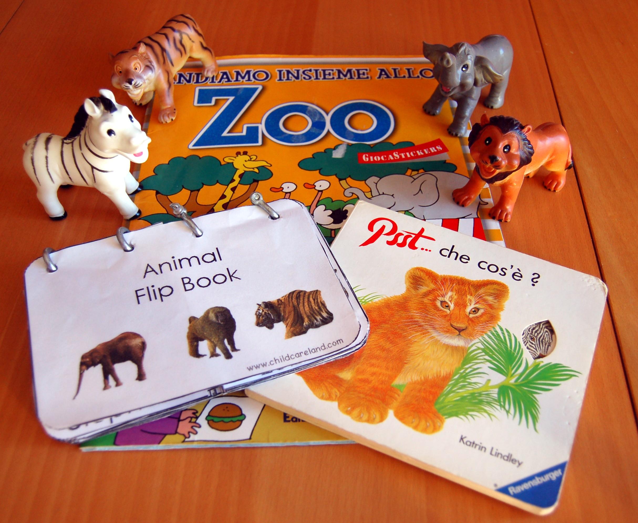 Lo zoo e gli animali libri ed attivit per bambini - Zoo animali da colorare ...