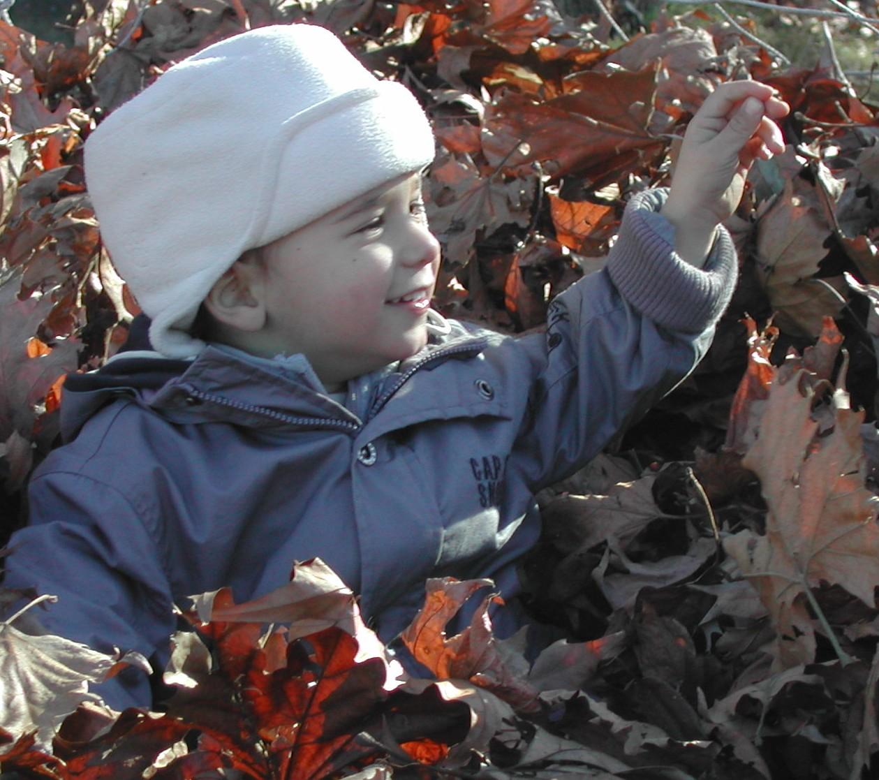 Giocare con le foglie ovvero lavoretti autunnali con i for Raccogliere castagne