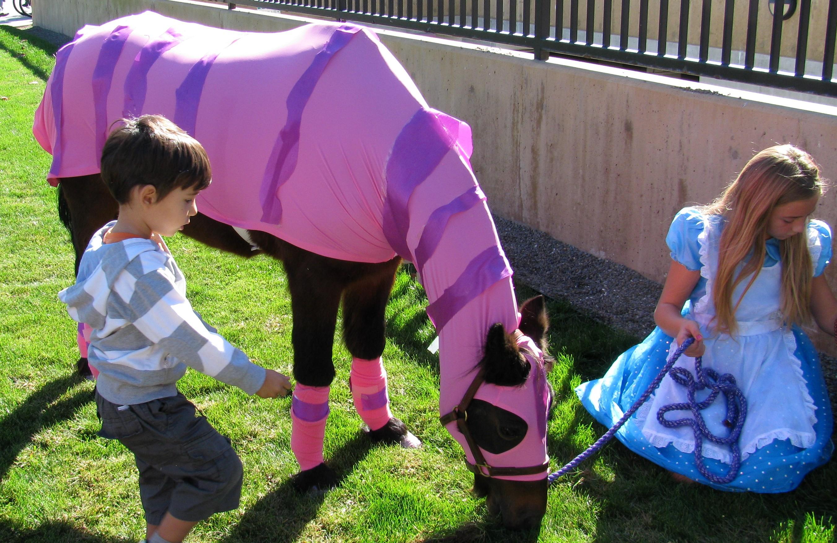 Costumi halloween animali for Box per cavalli fai da te