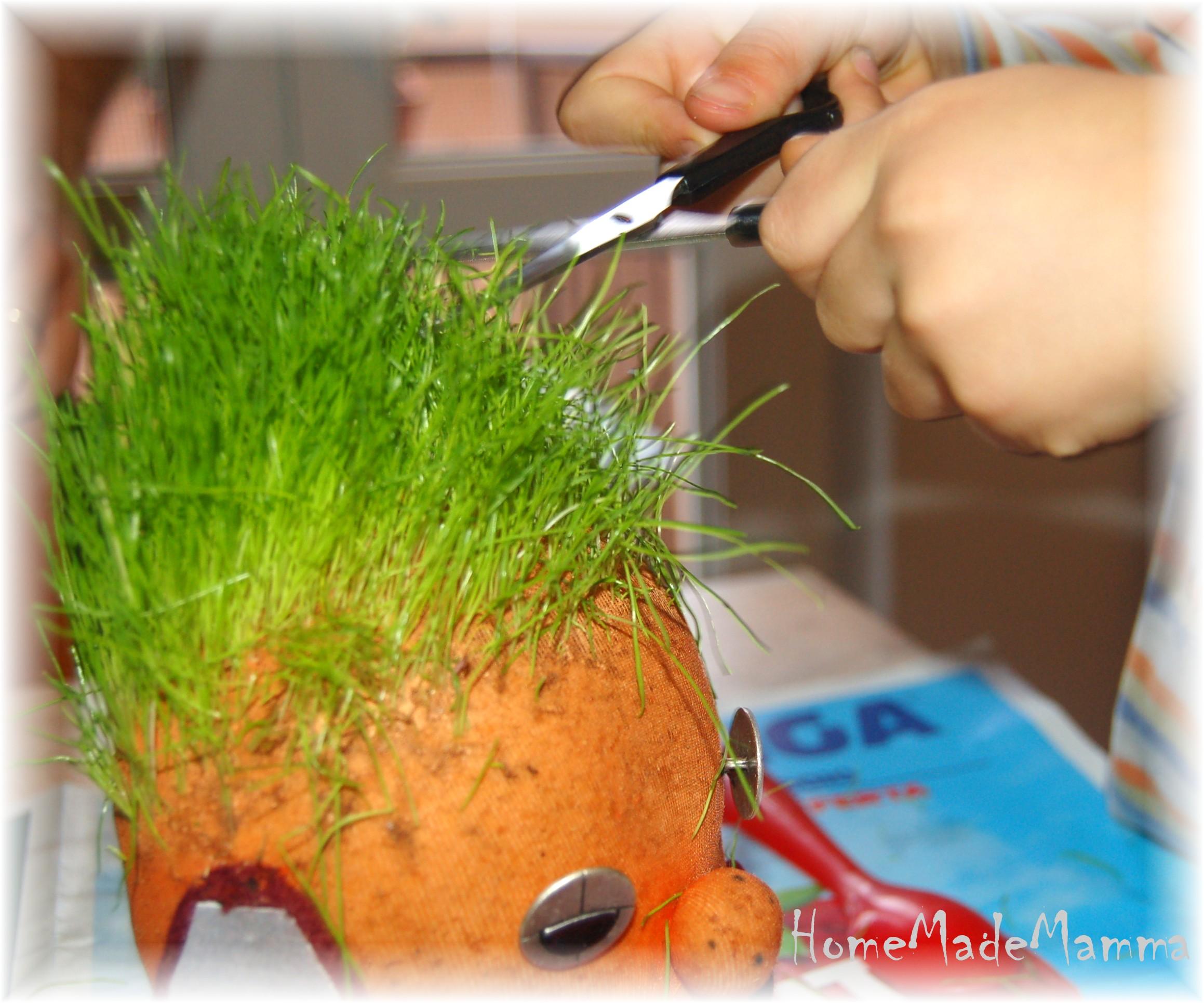 Pupazzetti con i capelli colorati