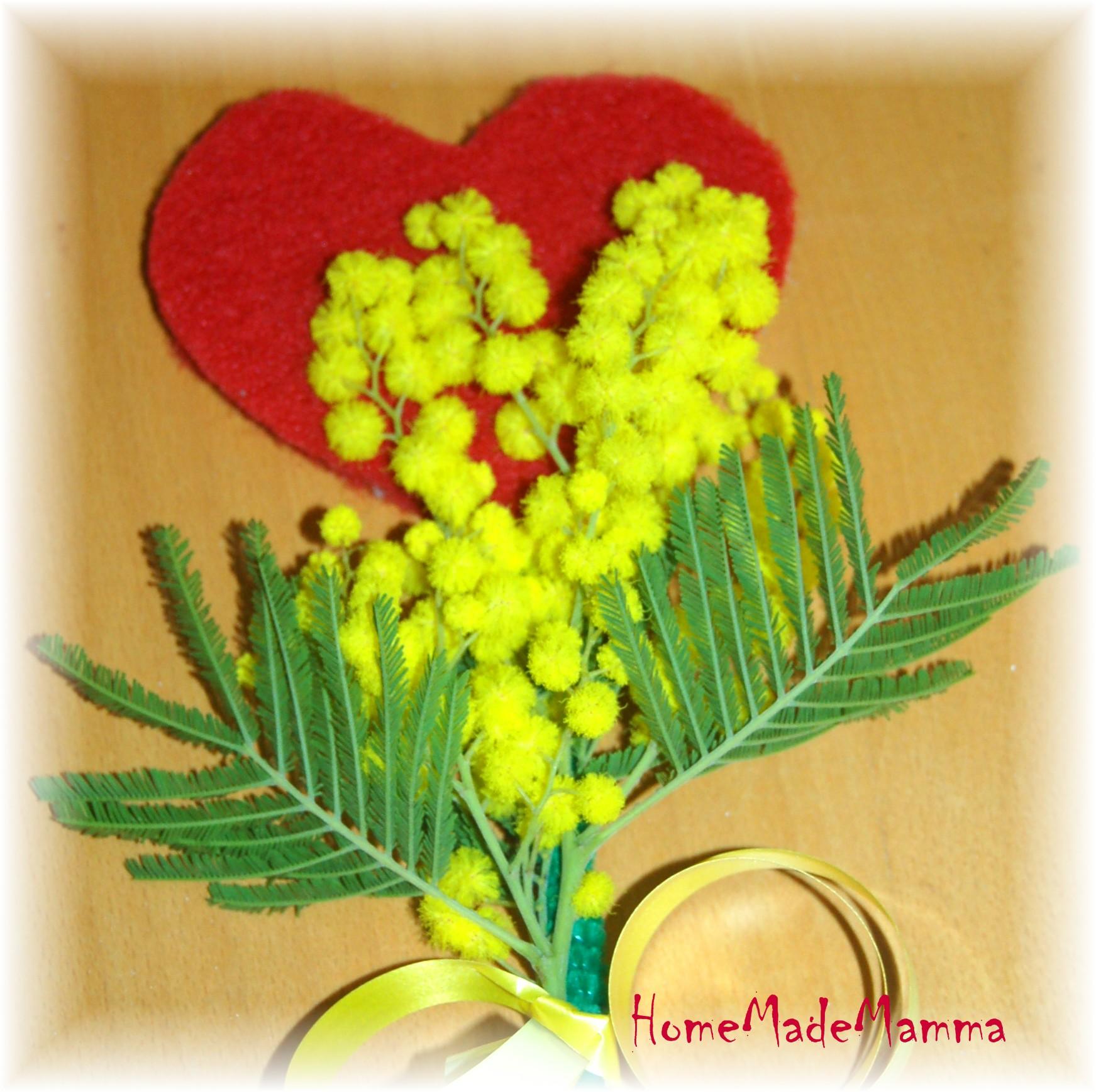 Mi piace molto la mimosa: mi piace regalarla e riceverla in dono. Ecco ...