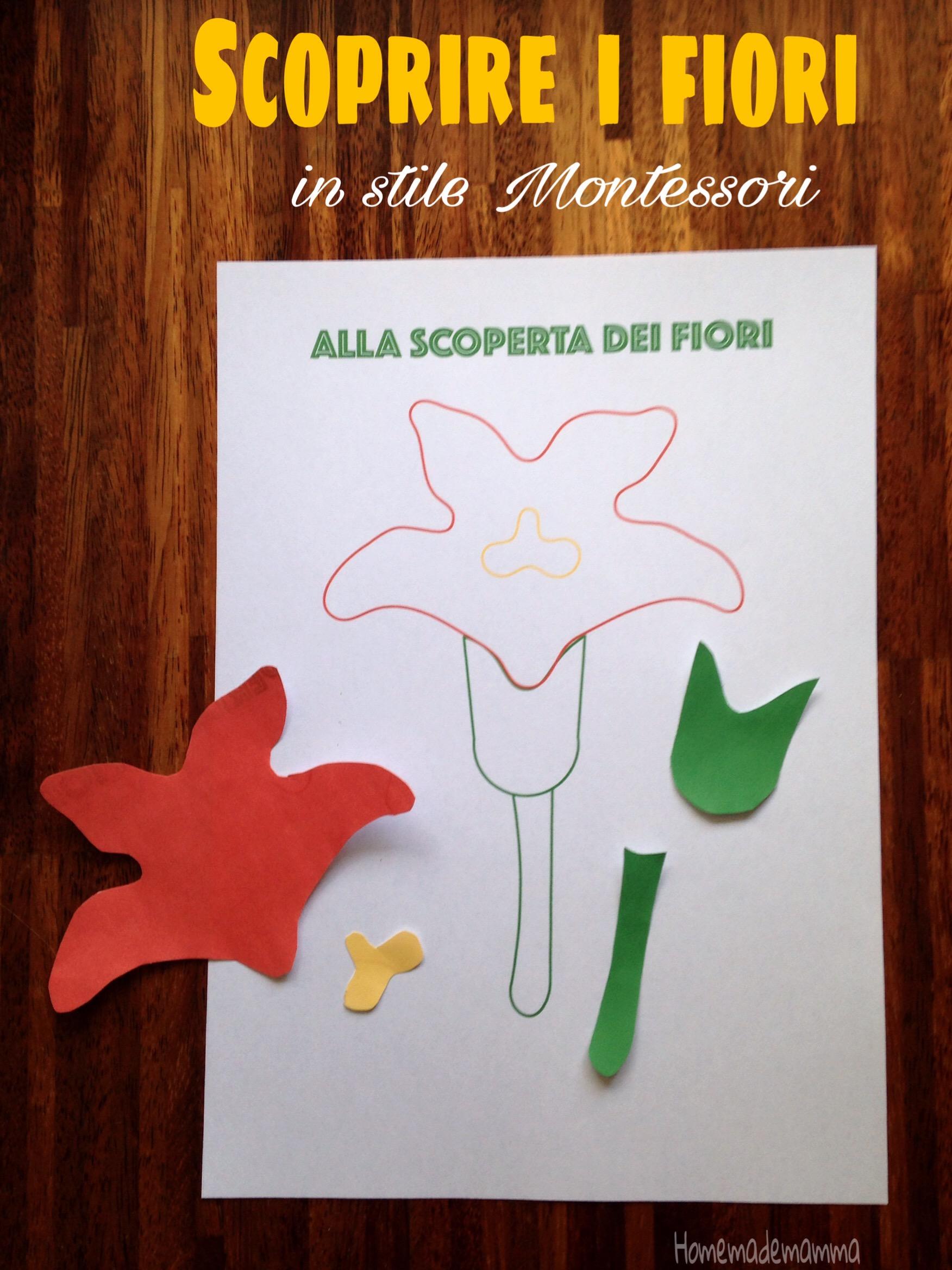 schede fiori montessori gratis