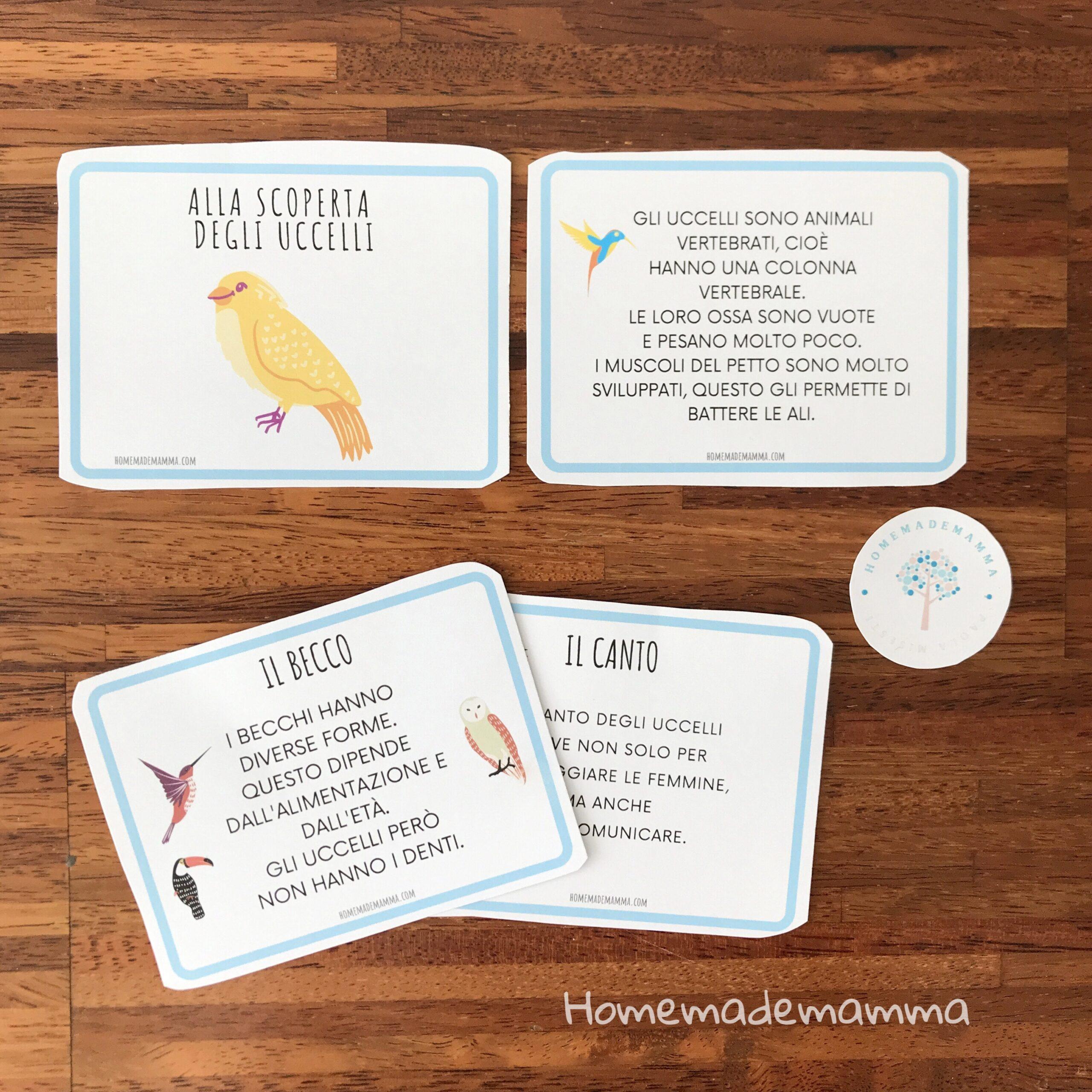 Schede e giochi per scoprire gli uccelli Da stampare