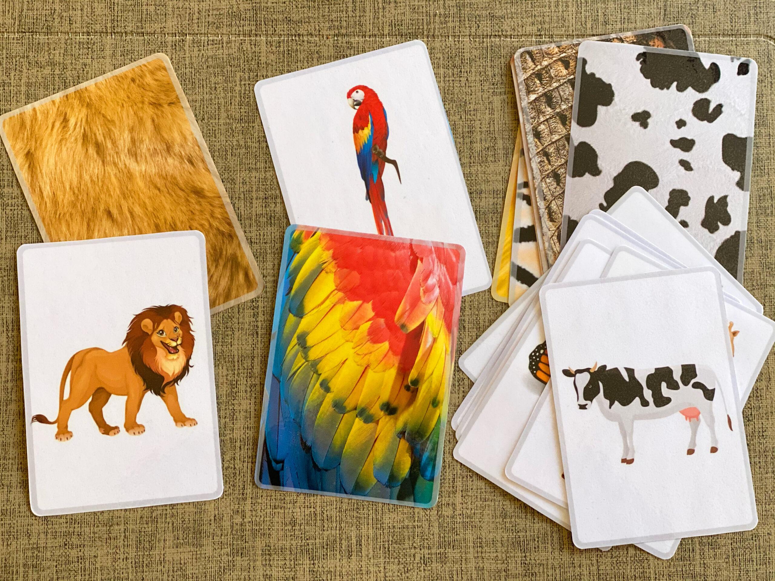 le carte degli animali di Imma