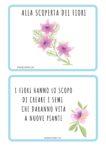 Cresco, gioco, imparo: alla scoperta dei fiori